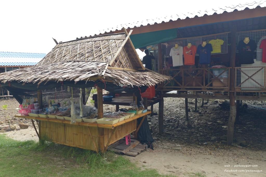เกาะพิทักษ์ ชุมพร010