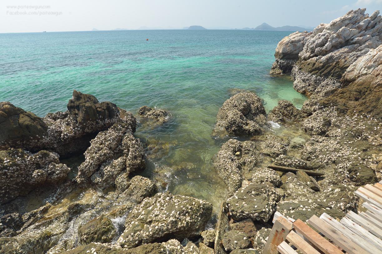 bluesea_koh_kham_sattahip_chonburi_thailand_-31